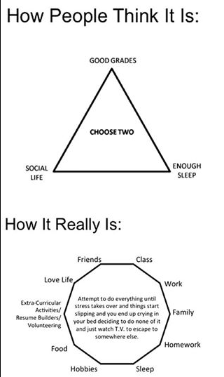 College life perspective